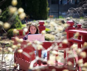 Framed by emerging spring blooms at UW-Madison's Allen Centennial Garden, freshman Rachel Smaby enjoys the area's return to more seasonal temperatures during a break among the botanical exhibits. Photo by John Hart, Wisconsin State Journal